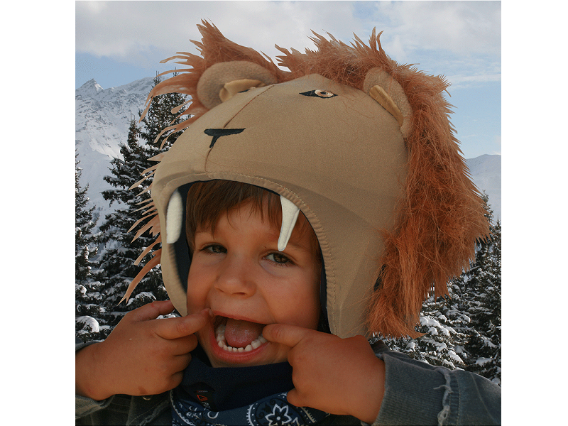 фото Нашлемник Coolcasc 023 Lion